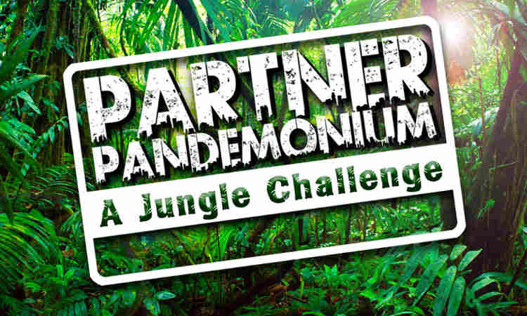 VWV's 'Partner Pandemonium' to Raise Money for Charity