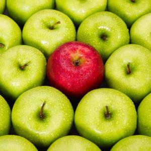 VWV Solicitors - Decision Makers' Law brief - Recruitment Apples