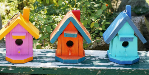 Collective Purchase of a Freehold - photo of coloured bird houses