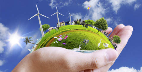 Energy Law Case Studies - energy project in the palm of a hand