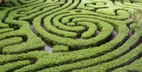 VWV Public Procurement Lawyers - maze image