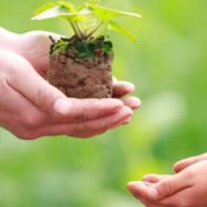 Charitable Legacies - Why Include A Charity in Your Will?